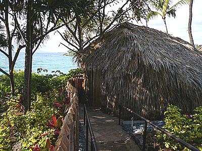 hawaii-1011.jpg