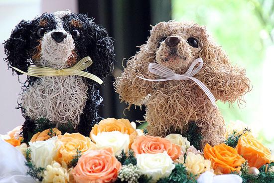 as_wedding-111.jpg