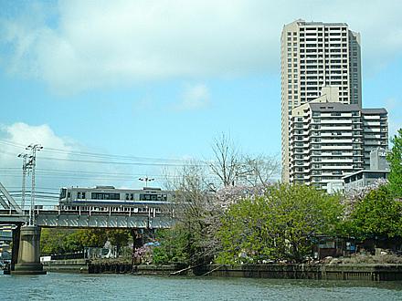 himawari-051.jpg