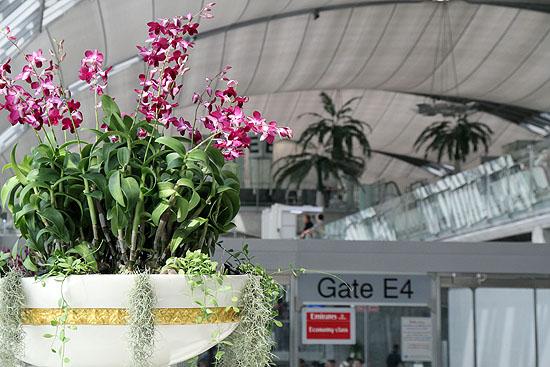 hongkong_2012-1157.jpg