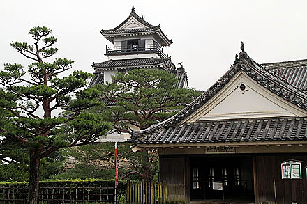 kouchi_2010-270.jpg
