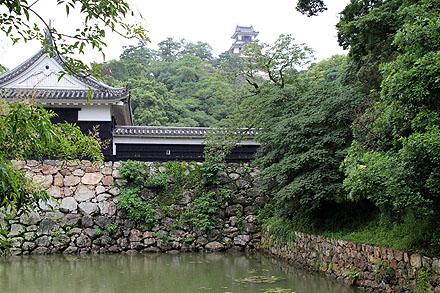 kouchi_2010-307.jpg