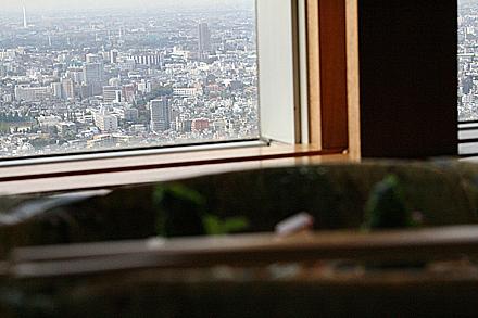 park_hyatt_tokyo-131.jpg
