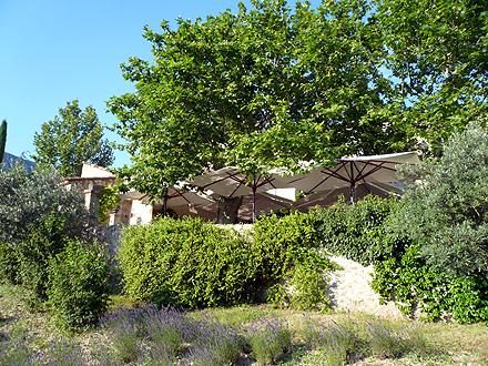 provence_1-1106.jpg