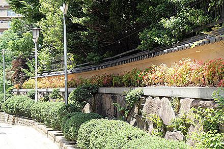 tenjin_2010-013.jpg